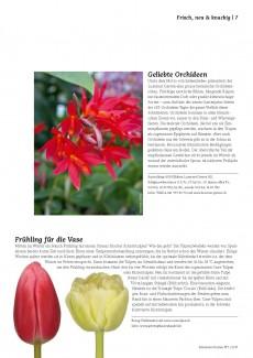 Presseartikel: Frühling für die Vase (Schweizer Garten | Ausgabe 1/2017)