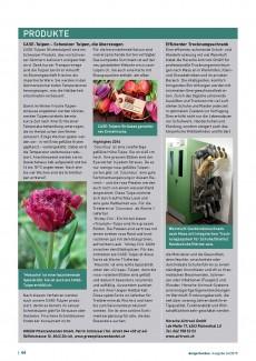 Presseartikel: CASE-Tulpen – Schweizer Tulpen, die überzeugen (der Gartenbau | Dezember 2015)