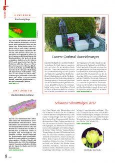 Presseartikel: Schweizer Schnitttulpen 2017 (g'plus | Janurar 2017)