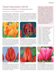 Presseartikel: Tulpen-Neuheiten 2012 (Florist | Februar 2012)