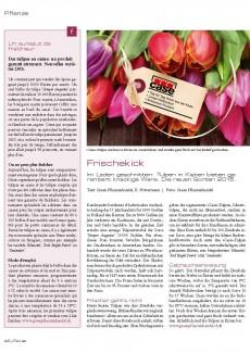 Presseartikel: Frischekick (Florist | Februar 2015)