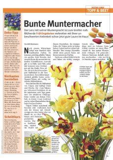 Presseartikel: Bunte Muntermacher (Glückspost | Februar 2017)