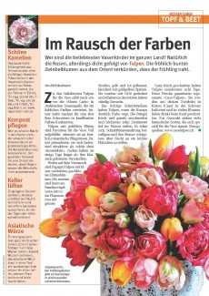 Presseartikel: Im Rausch der Farben (Glückspost | Ausgabe 4/2016)