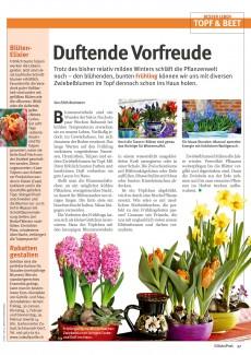 Presseartikel: Blüten-Elixier (Glückspost | Januar 2015)