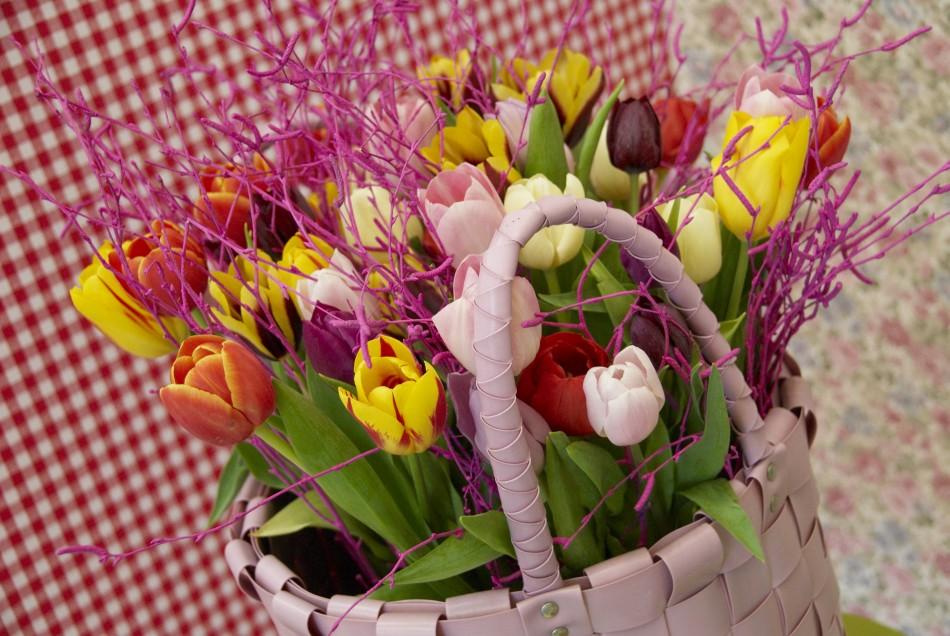Tulpen-Galerie: Bunter Tulpenstrauss