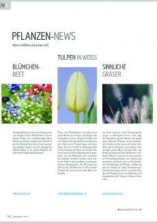 Presseartikel: Tulpen in weiss (Gartenidee | März 2017)