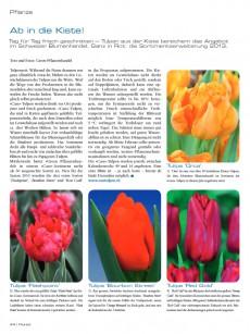 Presseartikel:  Tulpensortiment 2013: Ab in die Kiste! (Florist | Februar 2013)
