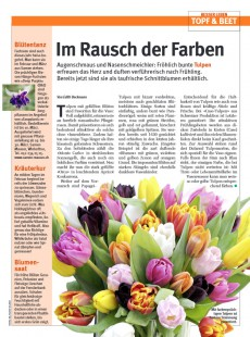 Presseartikel:  Im Rausch der Farben (GlücksPost | Februar 2012)