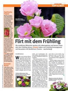 Presseartikel:  Taufrische Tulpen (GlücksPost | Februar 2013)