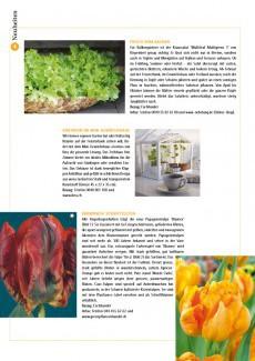 Presseartikel: Brandneue Schnitttulpen (Schweizer Garten | Februar 2012)