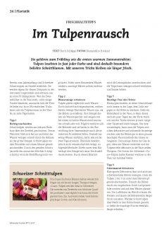 Presseartikel: Im Tulpenrausch (Schweizer Garten | März 2017)