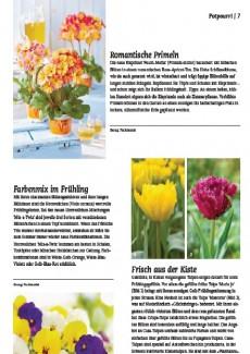 Presseartikel: Frisch aus der Kiste (Schweizer Garten | Februar 2015)